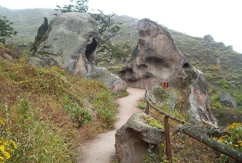 Camino en la Reserva Nacional de Lachay