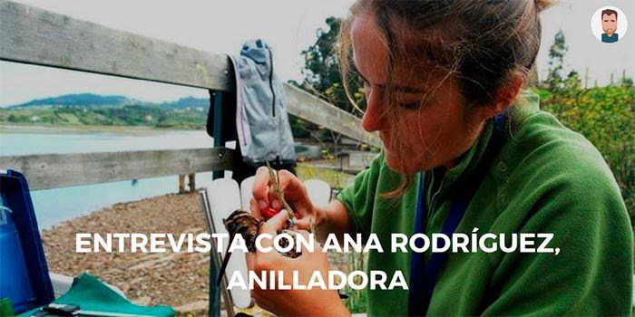Entrevista con Ana Rodríguez, anilladora