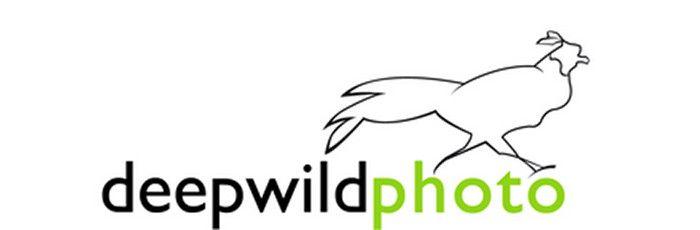 Logotipo de Deepwildphoto