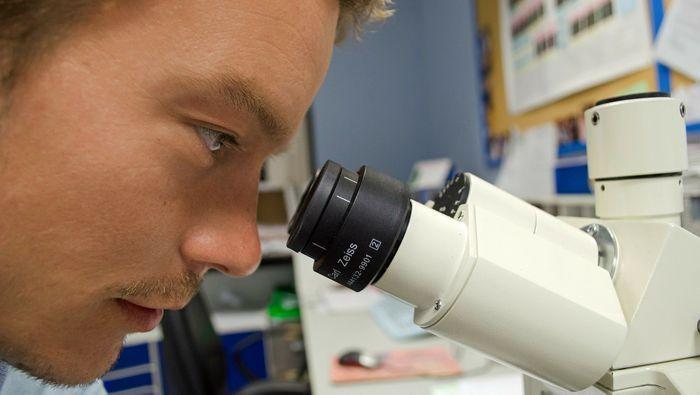 Técnico mirando por el microscopio