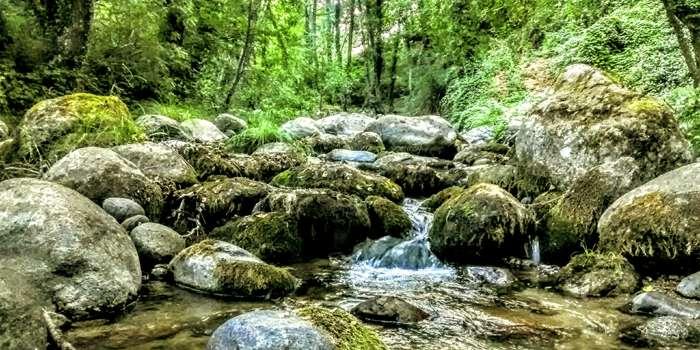 Un río con abundante piedra