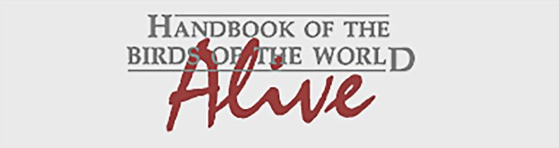 Logotipo del Handbook of the Birds of the World Alive