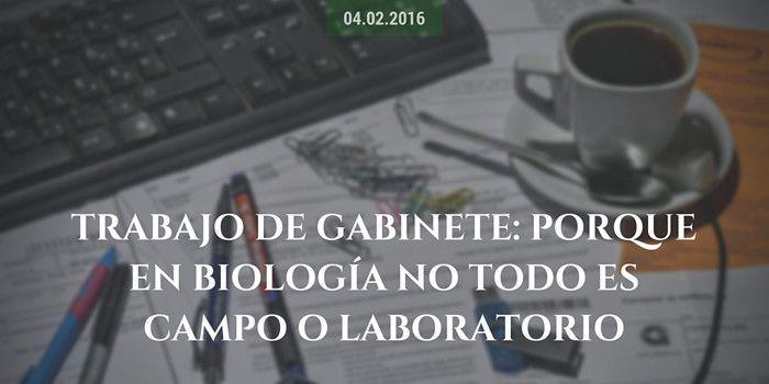 Trabajo de gabinete: porque en biología no todo es campo o laboratorio