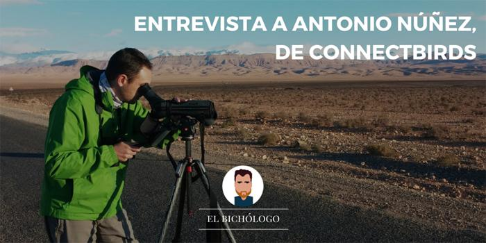 Entrevista a Antonio Núñez, de ConnectBirds