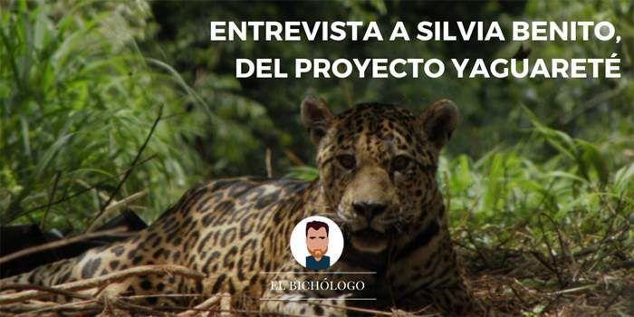 Entrevista a Silva, coordinadora de comunicación del Proyecto Yaguareté