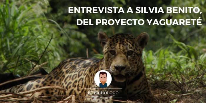 Entrevista  a Silvia Benito del Proyecto Yaguareté