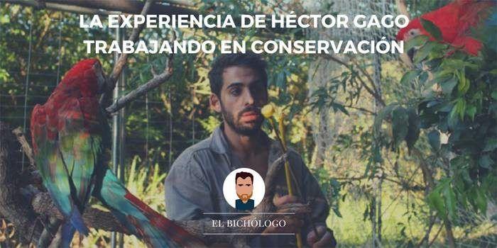 Entrevista a Héctor Gago sobre conservación