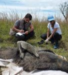 Héctor y una compañera estudiando osos hormigueros