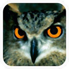 Logo de Aves de España