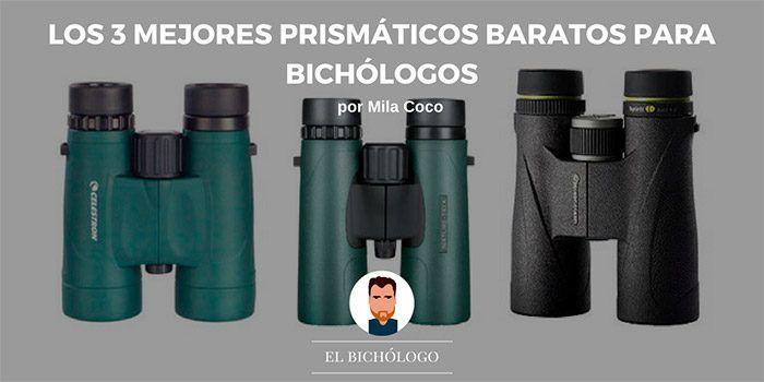 Los 3 mejores prismáticos baratos para bichólogos